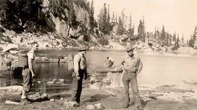 Early Trail Blazers on a lake plant